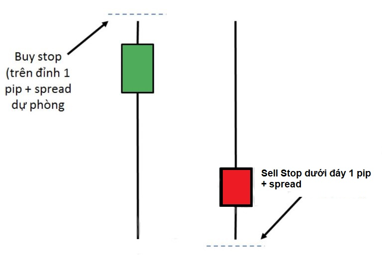 Giới thiệu về Pin Bar và chiến lược giao dịch sử dụng Pin Bar đơn giản, hiệu quả