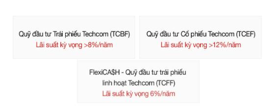 Cơ hội đầu tư tại Việt Nam với quỹ đầu tư Techcombank.2